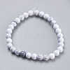 Natural Howlite Beads Strands TURQ-G091-6mm-2
